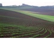 中科院:中國耕地面積數量增加 優質耕地減少