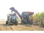 鼓励蔗业机械化 每台甘蔗收割机补助10万元