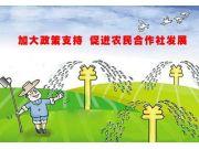 中央财政安排230亿元资金,支持农业适度规模经营