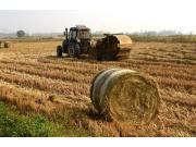 农业部答复:秸秆综合利用,我们很重视!