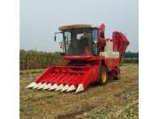 """雷沃谷神""""小八行""""玉米机满足不同收割需求"""