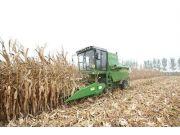 农业部:大力推介粮改饲技术模式 加快推进农业供给侧结构性改革