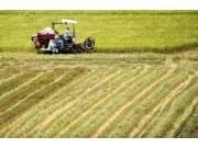 江西整合40亿元建设高标准农田