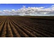 九省份1200万亩耕地试点轮作休耕,农民赚不到钱了?