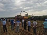 农业机械化时代福利:省力、省事、省心