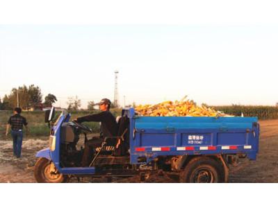 润源玉米收获机:品质和服务都无可挑剔