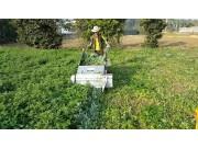 好消息!购买茎叶类蔬菜收获机也能享受补贴