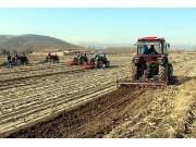 農業農村部:推動熟化殘膜回收機具落地!