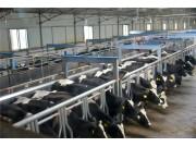 九部委发布《意见》明确!这几类机械纳入农机购置补贴!