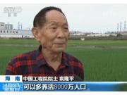 我國今年首次大范圍試種海水稻 包括176份品種