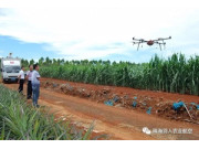 國家航空植保科技專家呼吁:植保無人機安全用藥迫在眉睫