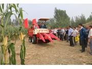 时风匠心打造4YZP-2H四驱型玉米收获机 小、快、灵