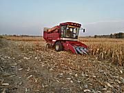 玉米收获机触底反弹 或稳健趋强发展