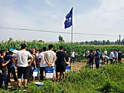 牧神玉米收获机演示会在山东阳信举行,多功能玉米机广受好评