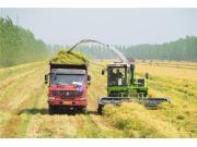 2018年下半年農機市場運行六大預判