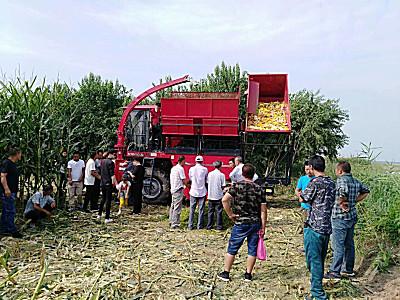 牧神4YZB-3A茎穗兼收玉米收获机轻松应对3.6米高玉米植株