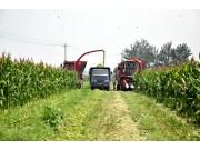 把握市场机遇 新研股份扩张青贮机及茎穗兼收玉米机市场