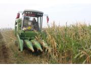 骤然暴涨,玉米收获机市场沉睡三年终苏醒?
