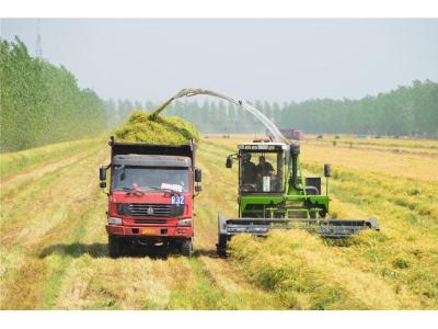 旺季不旺,消费下行,农机行业回归仍待时日
