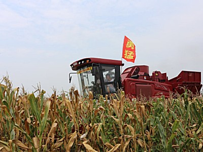 不惧市场低迷,这家经销商对勇猛玉米收获机信心满满