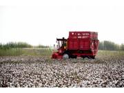 钵施然采棉机,新疆机采棉快速普及的重要功臣