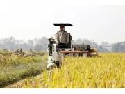 全国人大代表王晓梅:新型职业农民培训可以设置农机专业!
