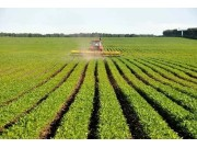 我國大豆種植面積大幅增加,機械化有市場!