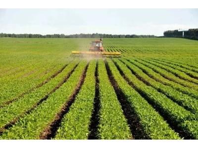 我国大豆种植面积大幅增加,机械化有市场!