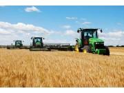 今年主产区六省实行小麦最低收购价