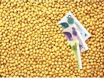 国产大豆迎来政策利好!未来一段时间,大豆价格保持持续上涨走势!