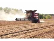 调减玉米、振兴大豆,农民需要有更多保障!