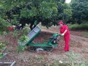 果园机械化成就农机新名牌——农机地头展