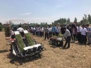 洋马农机携新机具新技术亮相中国农机推广田间日活动