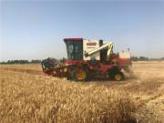 20年驾龄的农机手告诉你,小麦收割机为啥选郑州中联?