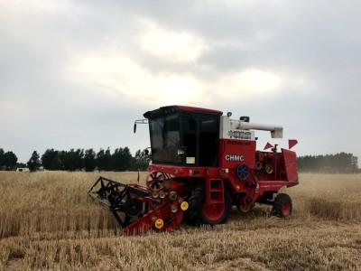 這臺小麥收割機不僅收的干凈還跑得快