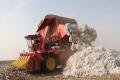 这台国产6行采棉机完全不输进口品质,回本更快!