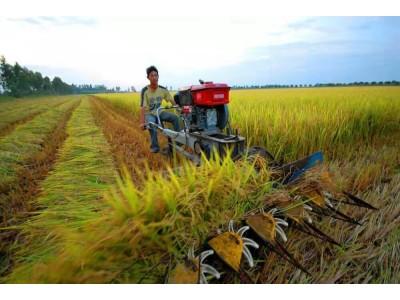 越南除了旅游以外的其他,让我们一起探寻越南农机市场