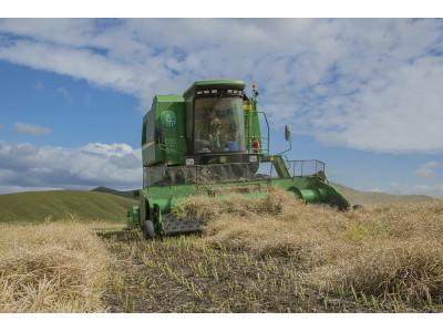 約翰迪爾W230收割機車隊交付高原丘陵地區用戶
