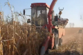 大品牌的產品更可靠,買莖穗兼收玉米收獲機認準牧神