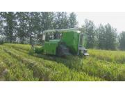 全国首台双通道再生稻收割机在湖北洪湖首秀