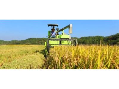 年产1.3万亿斤,我国粮食生产迈上新台阶!