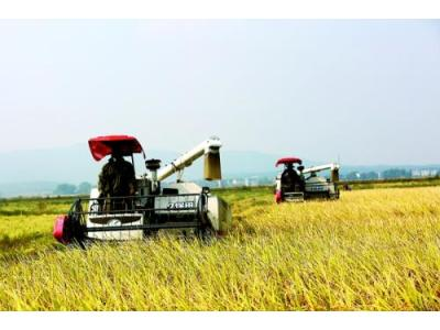 農業農村部:農業信息化發展已到關鍵時期