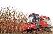 籽粒机收引领玉米产业高质量发展