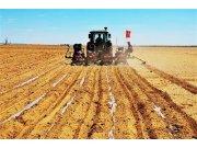 內蒙古農作物播種面積已達126萬畝