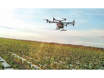 新疆將試點下發植保無人飛機農機購置補貼