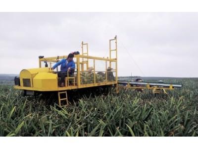 技術自主研發 效率提高三倍——詳解國內首款菠蘿采收機