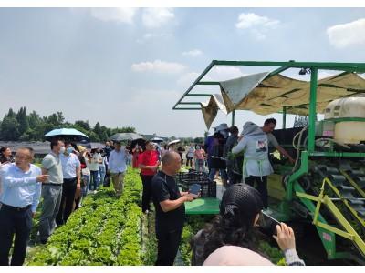 四川省召开蔬菜生产全程机械化现场观摩交流会