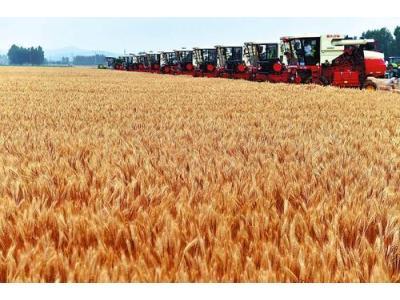 安徽省小麥搶收任務全面完成,較往年提前5天,創造麥收新速度