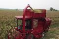 武月华:代理勇猛玉米收获机是我近30年农机销售生涯**正确的决定