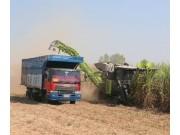 破解甘蔗機收難題需要整體方案